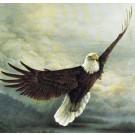 """""""Auf den Schwingen des Adlers"""" - Kurs"""